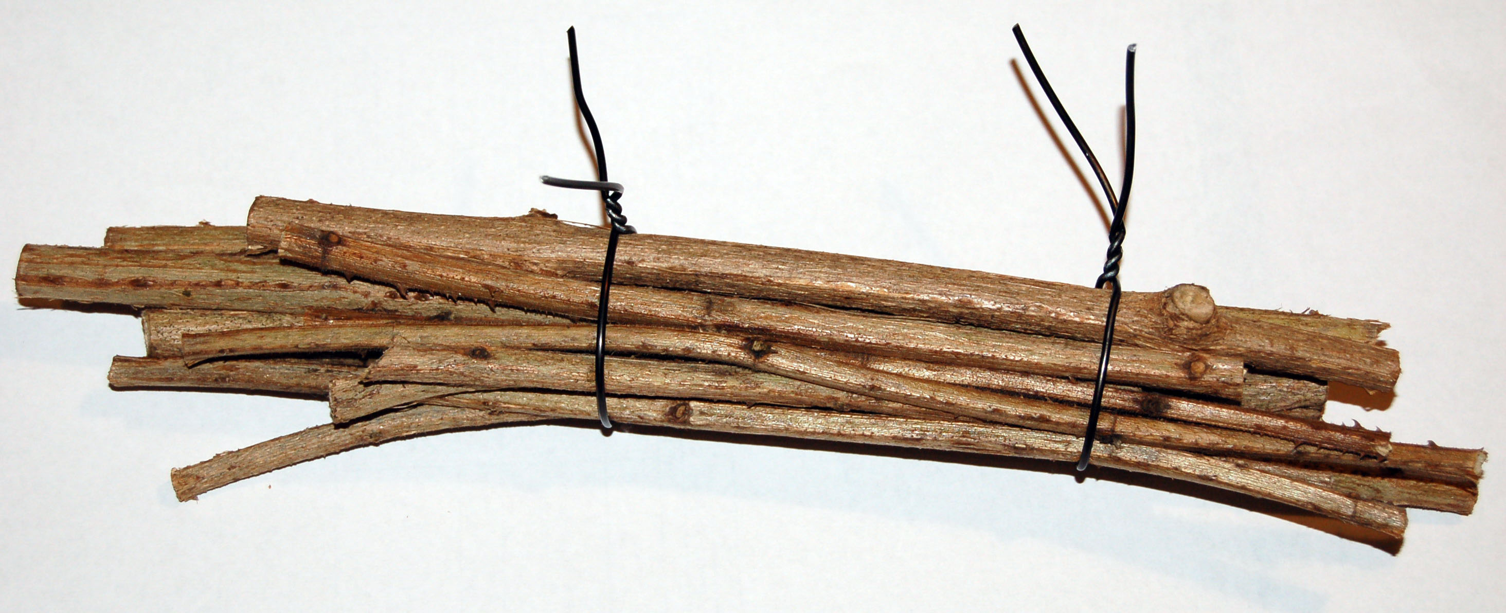 Lantana stems bundled together as a nest for Exoneura spp. bees.