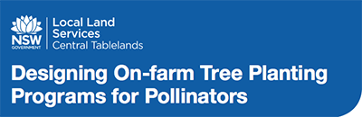 Designing On Farm Tree Planting For Pollinators